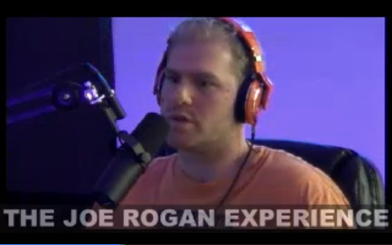 The Joe Rogan Experience #303 - Matt Vengrin, Brian Redban