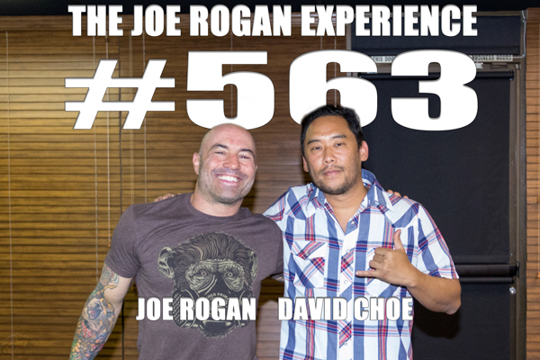The Joe Rogan Experience #563 - David Choe