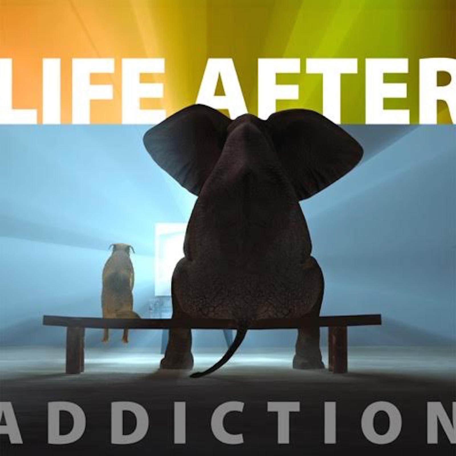 Life After Addiction