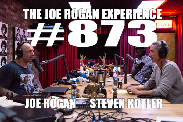 The Joe Rogan Experience #873 - Steven Kotler