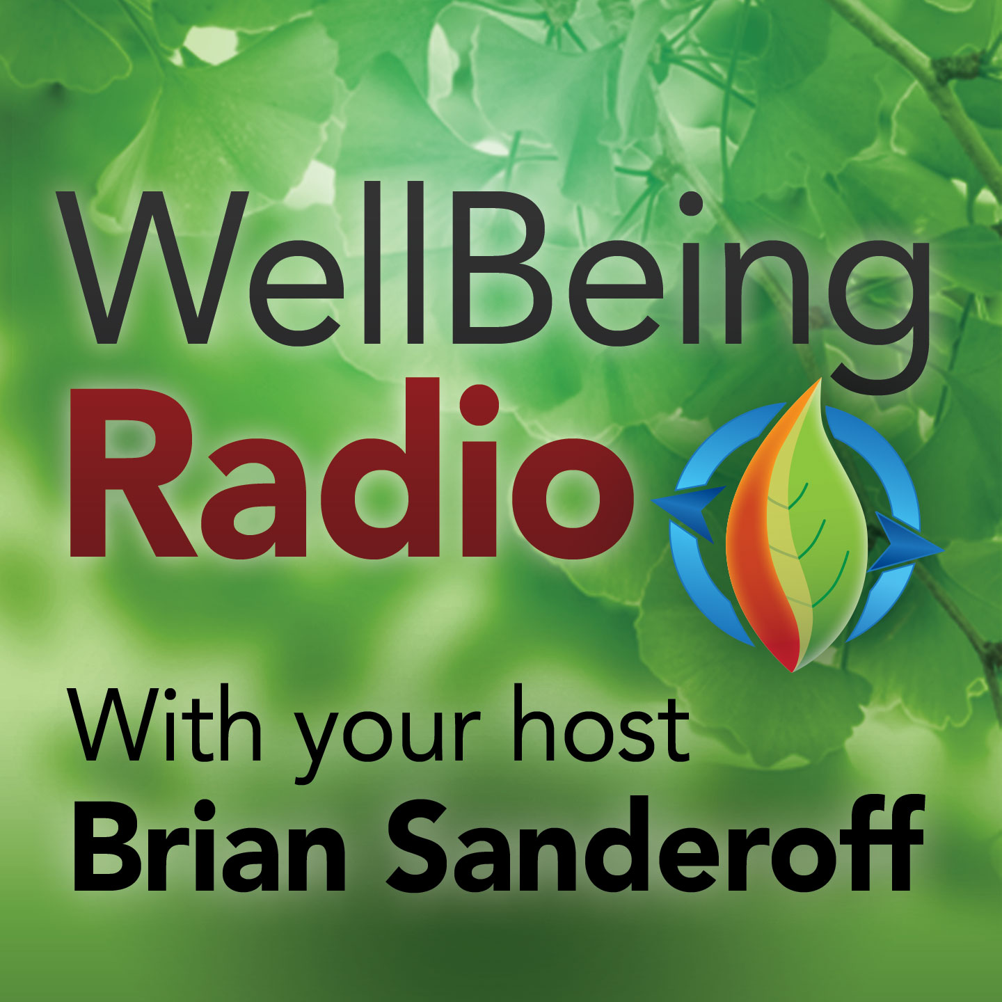 Well Being Radio with Brian Sanderoff