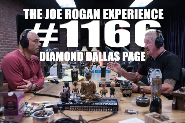 Joe sarge free videos watch download and enjoy joe