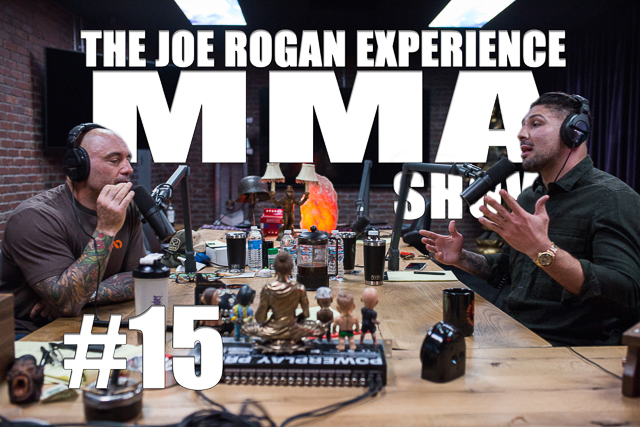 The Joe Rogan Experience JRE MMA Show #15 with Brendan Schaub