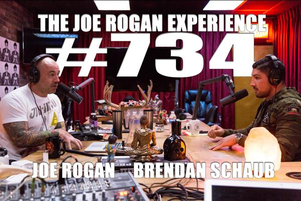 The Joe Rogan Experience #734 - Brendan Schaub
