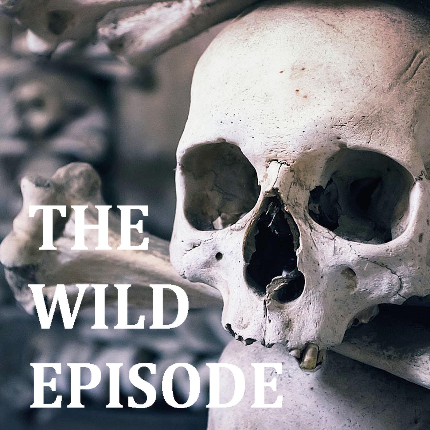 Best Ecological Adventures Podcast Episodes