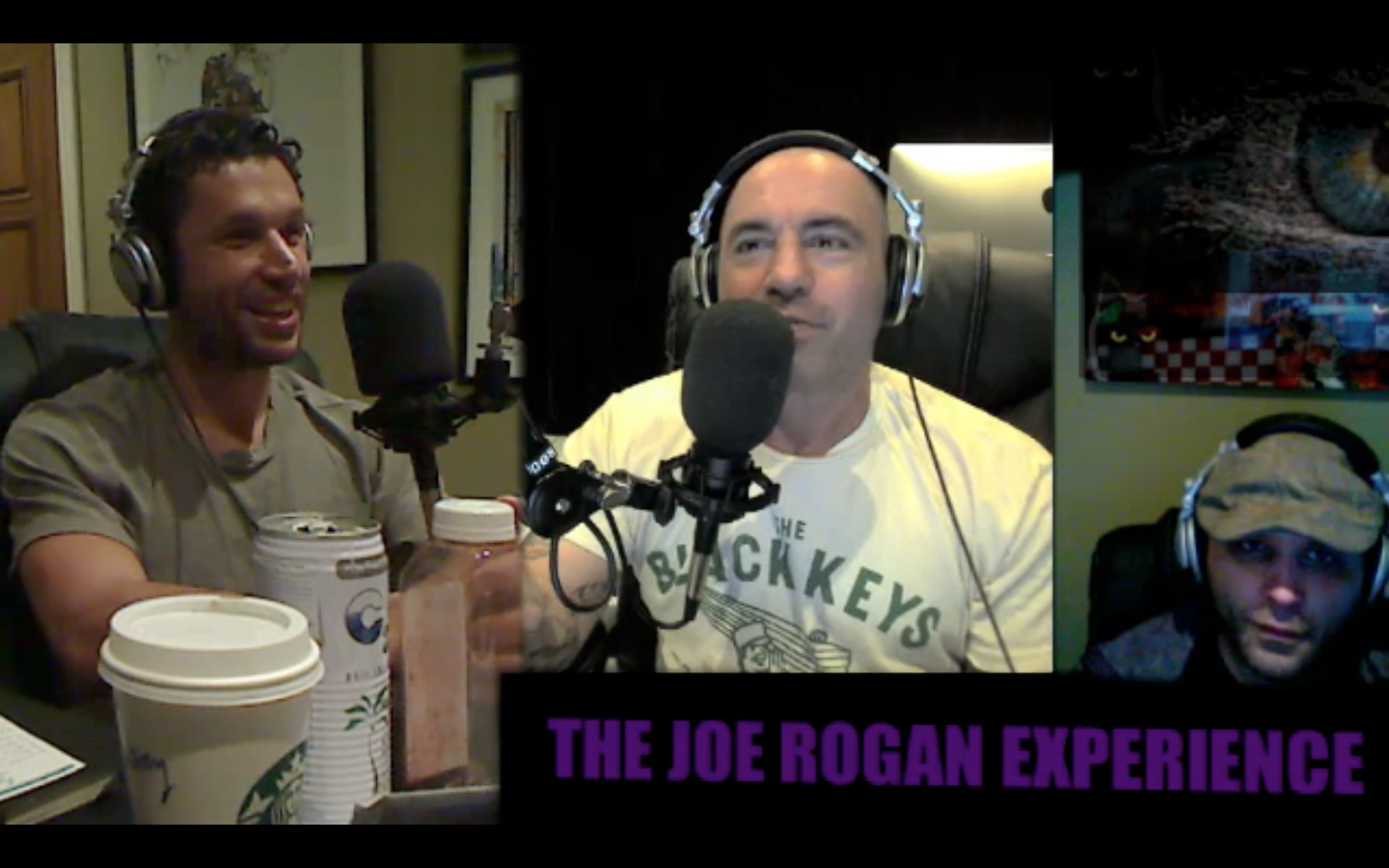 The Joe Rogan Experience #195 - Aubrey Marcus, Brian Redban
