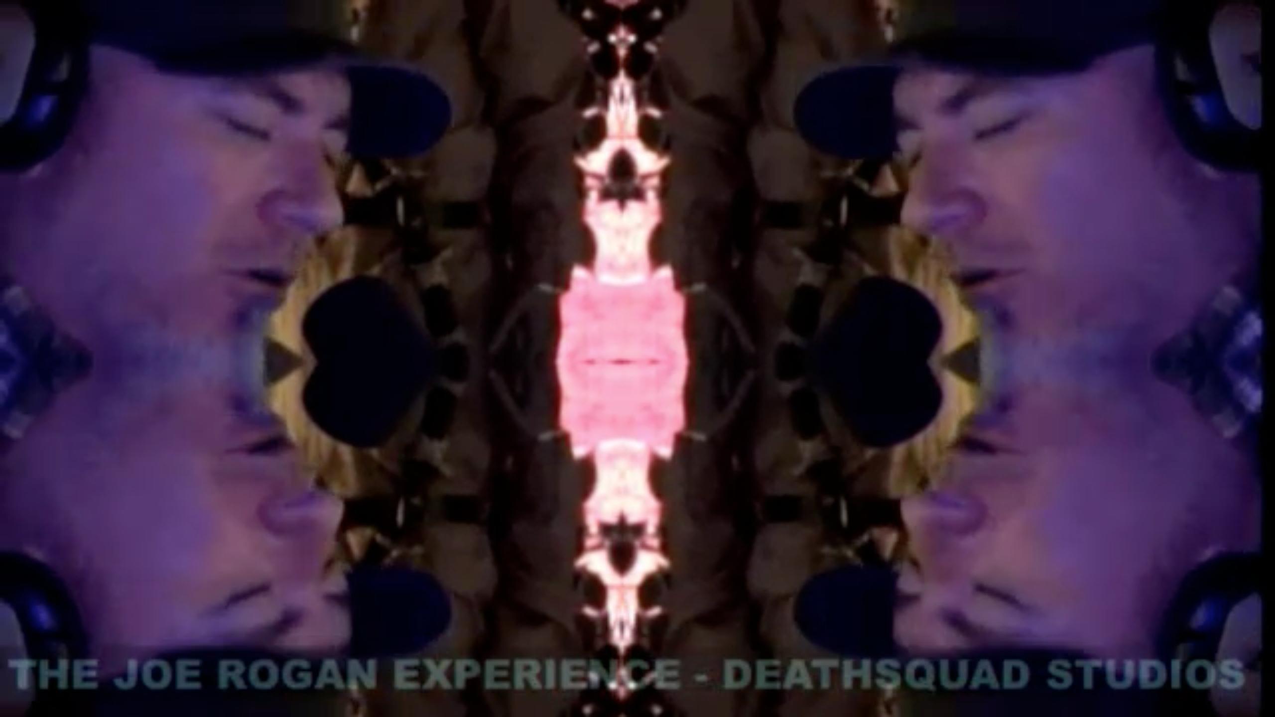 The Joe Rogan Experience #254 - EVERLAST, Brian Redban