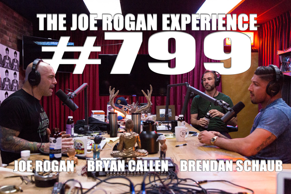 The Joe Rogan Experience #799 - Brendan Schaub & Bryan Callen