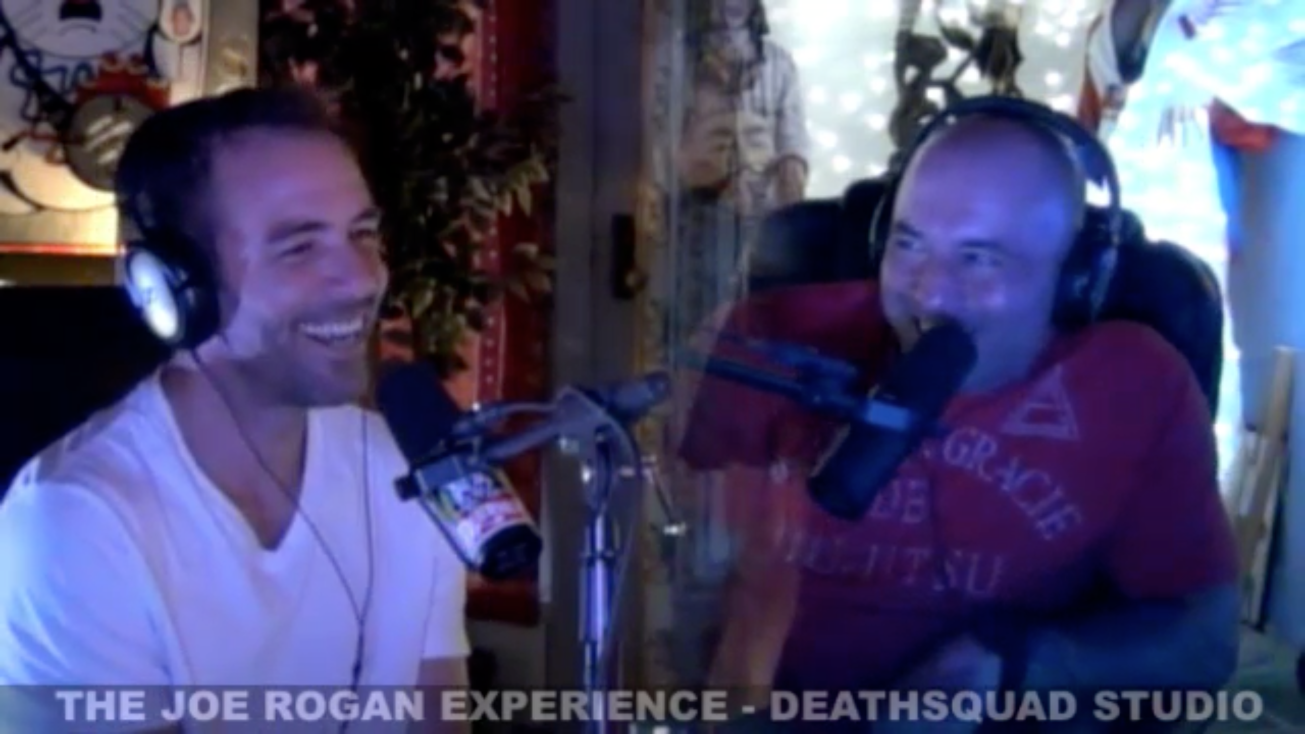 The Joe Rogan Experience #281 - Bryan Callen, Brian Redban