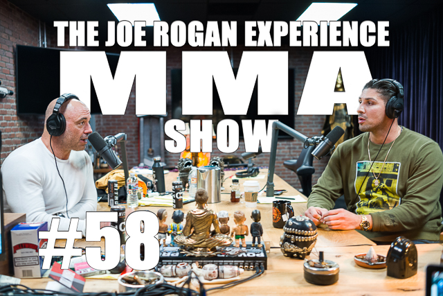 The Joe Rogan Experience JRE MMA Show #58 with Brendan Schaub