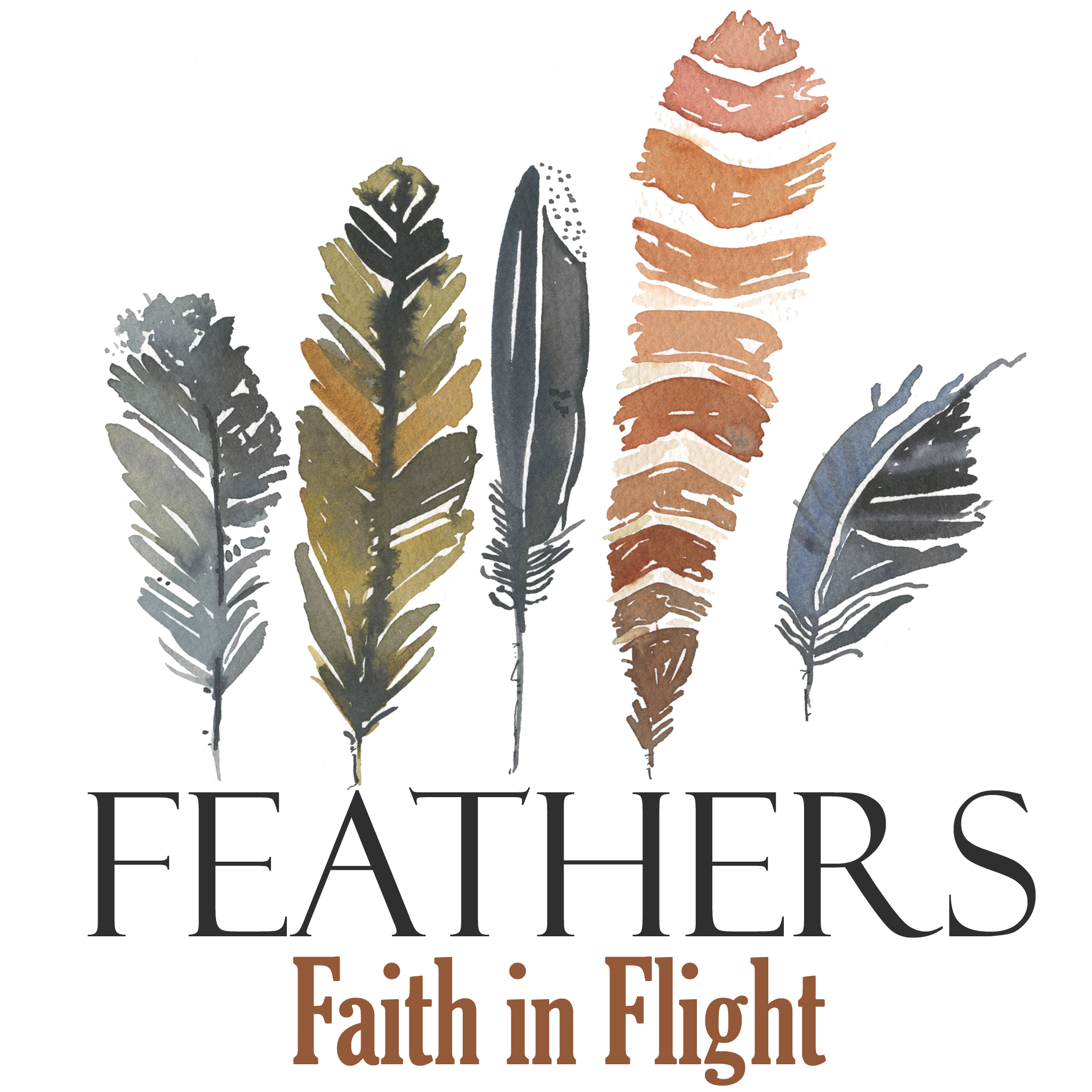 Feathers : Faith in Flight
