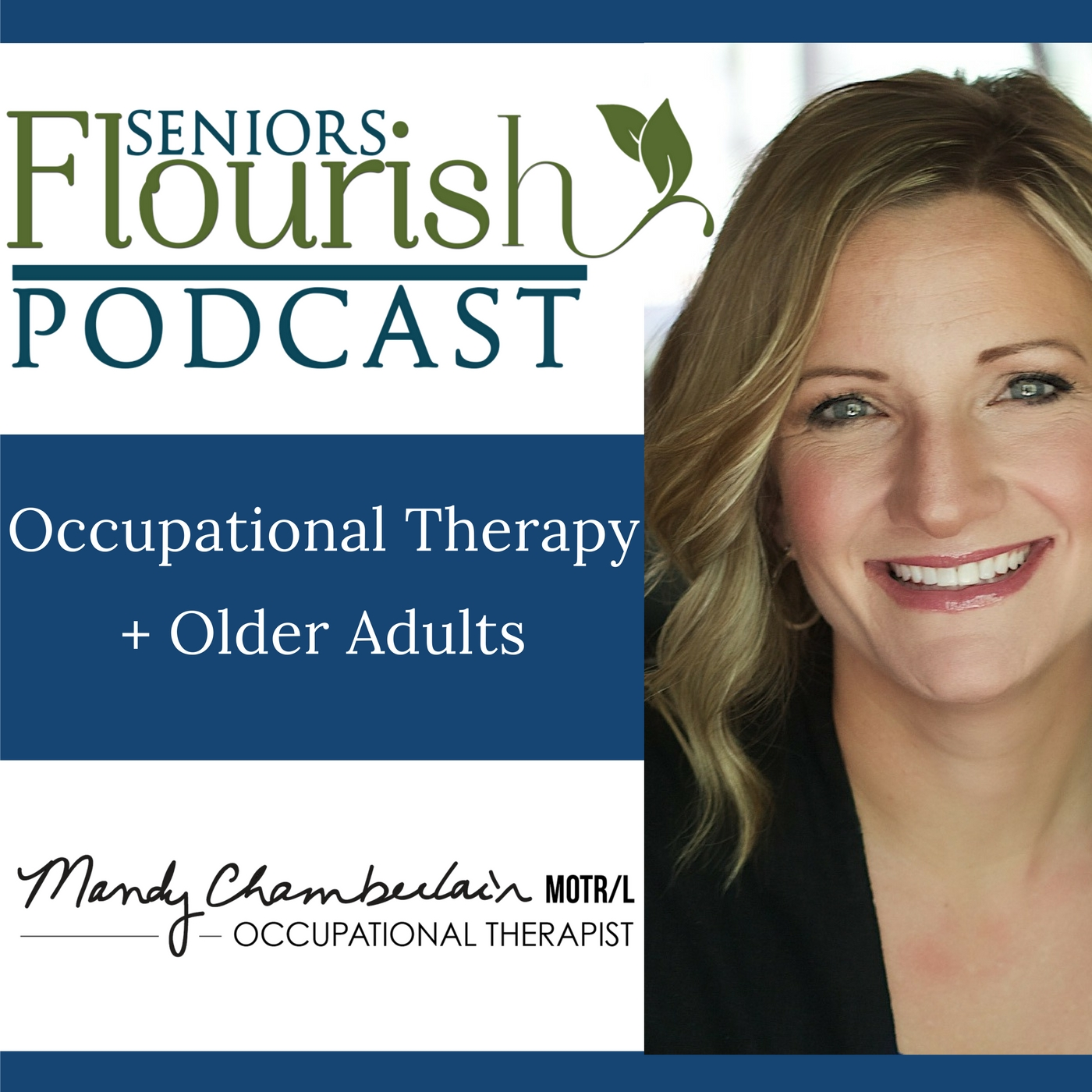 adult and therapy occupational driving Older