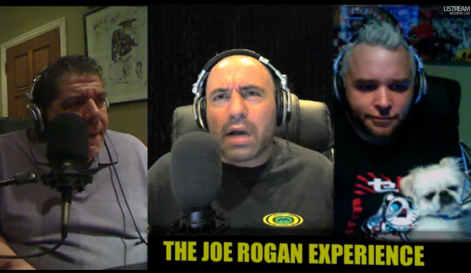 The Joe Rogan Experience #250 - Joey Diaz, Brian Redban