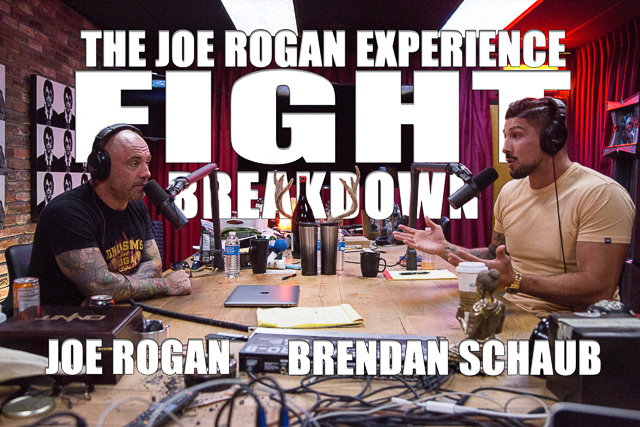 The Joe Rogan Experience Fight Breakdown - Mayweather vs. McGregor