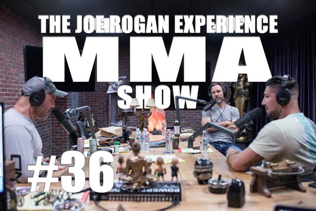 The Joe Rogan Experience JRE MMA Show #36 with Brendan Schaub & Bryan Callen