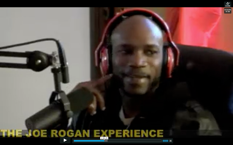 The Joe Rogan Experience #314 - Ian Edwards
