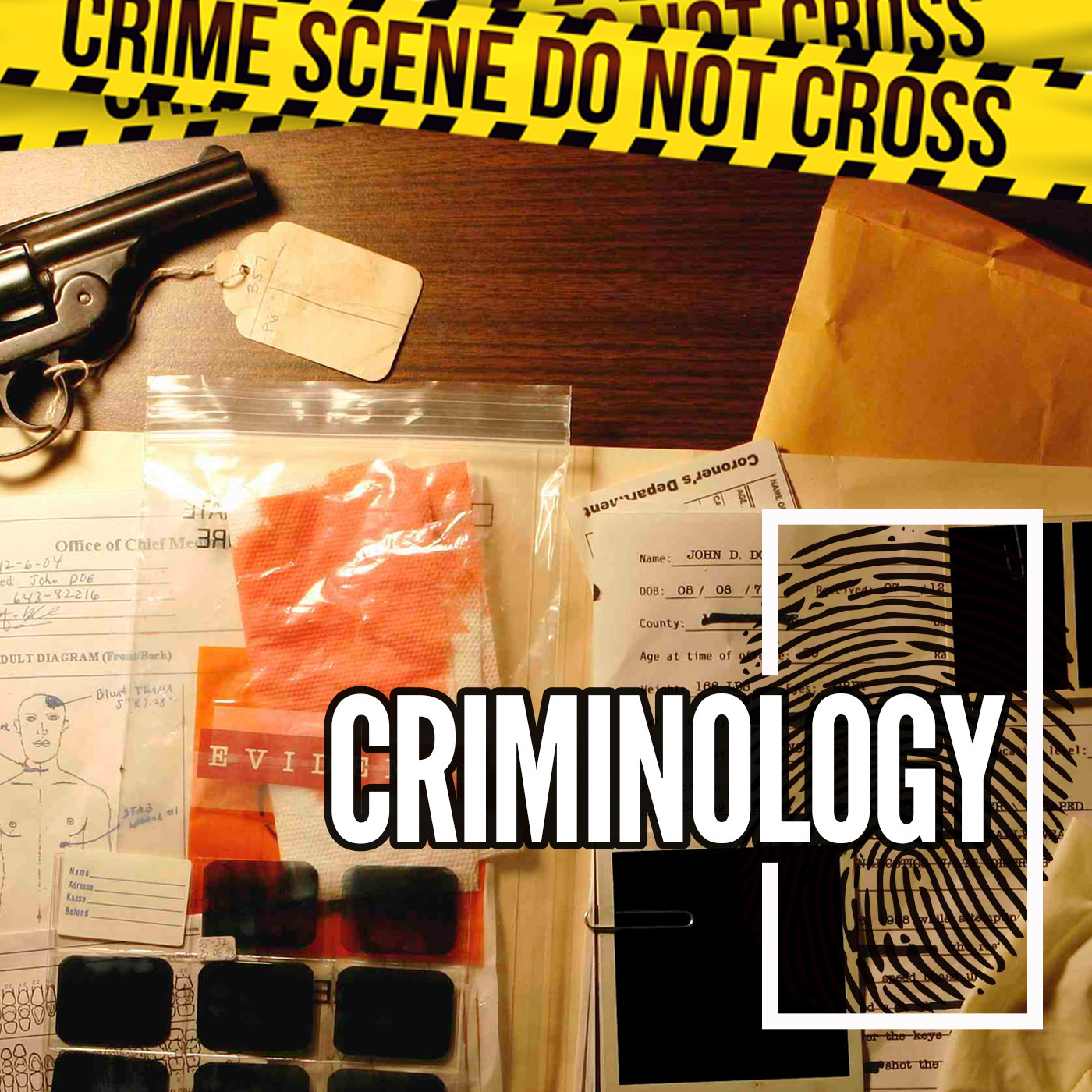 Crime and criminologists