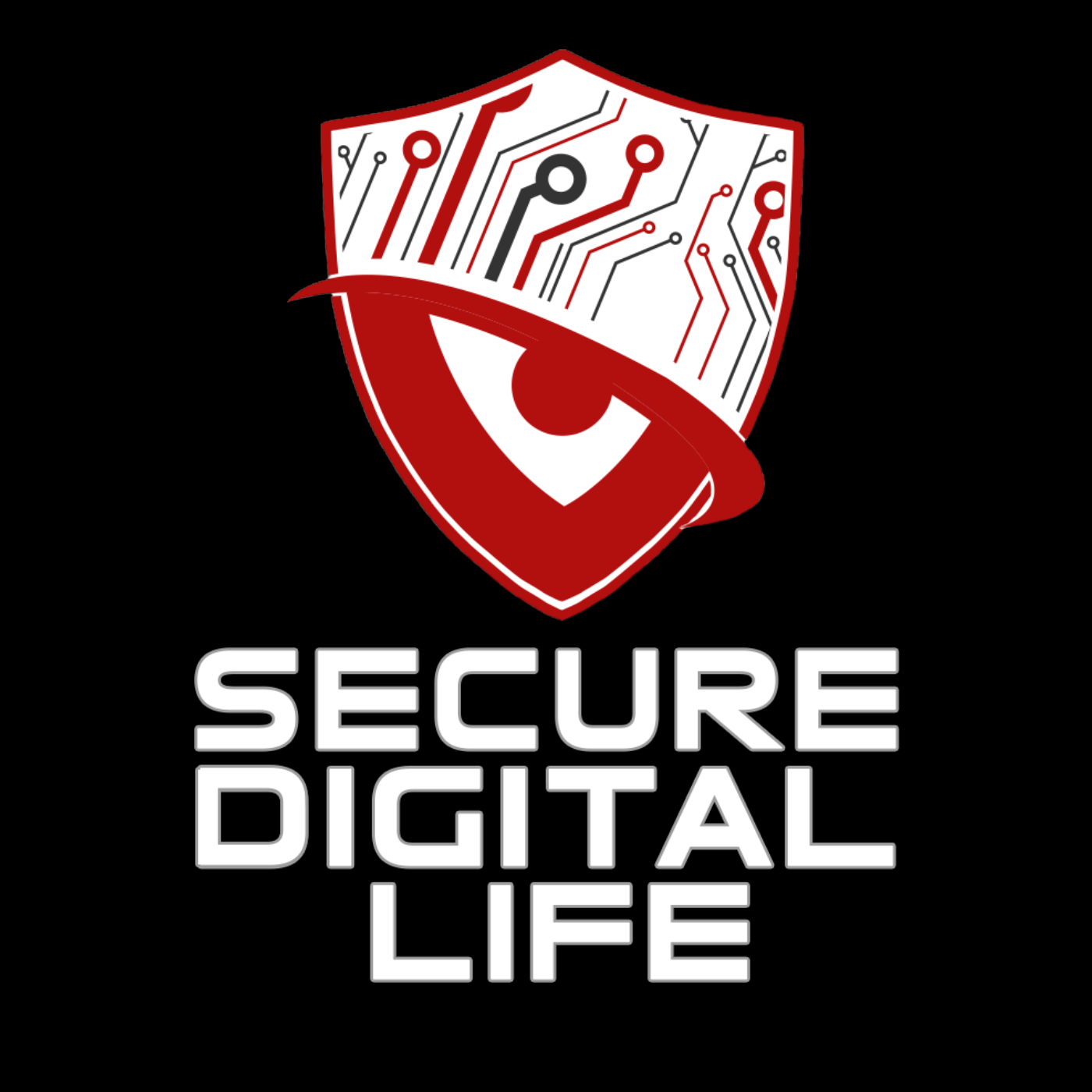 Secure Digital Life (Audio)