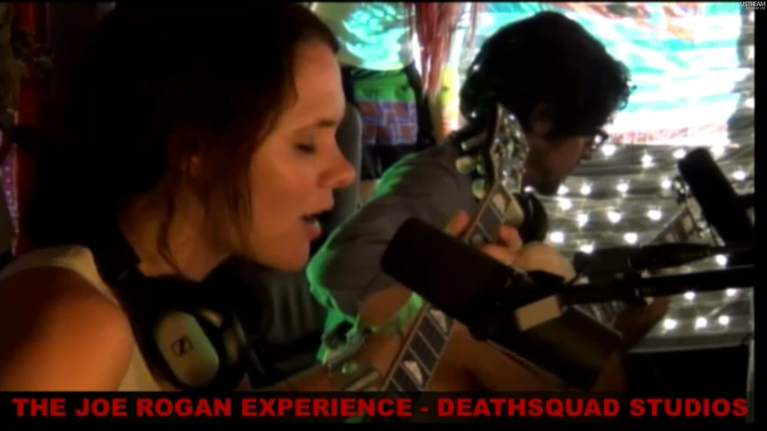 The Joe Rogan Experience #243 - HoneyHoney, Brian Redban