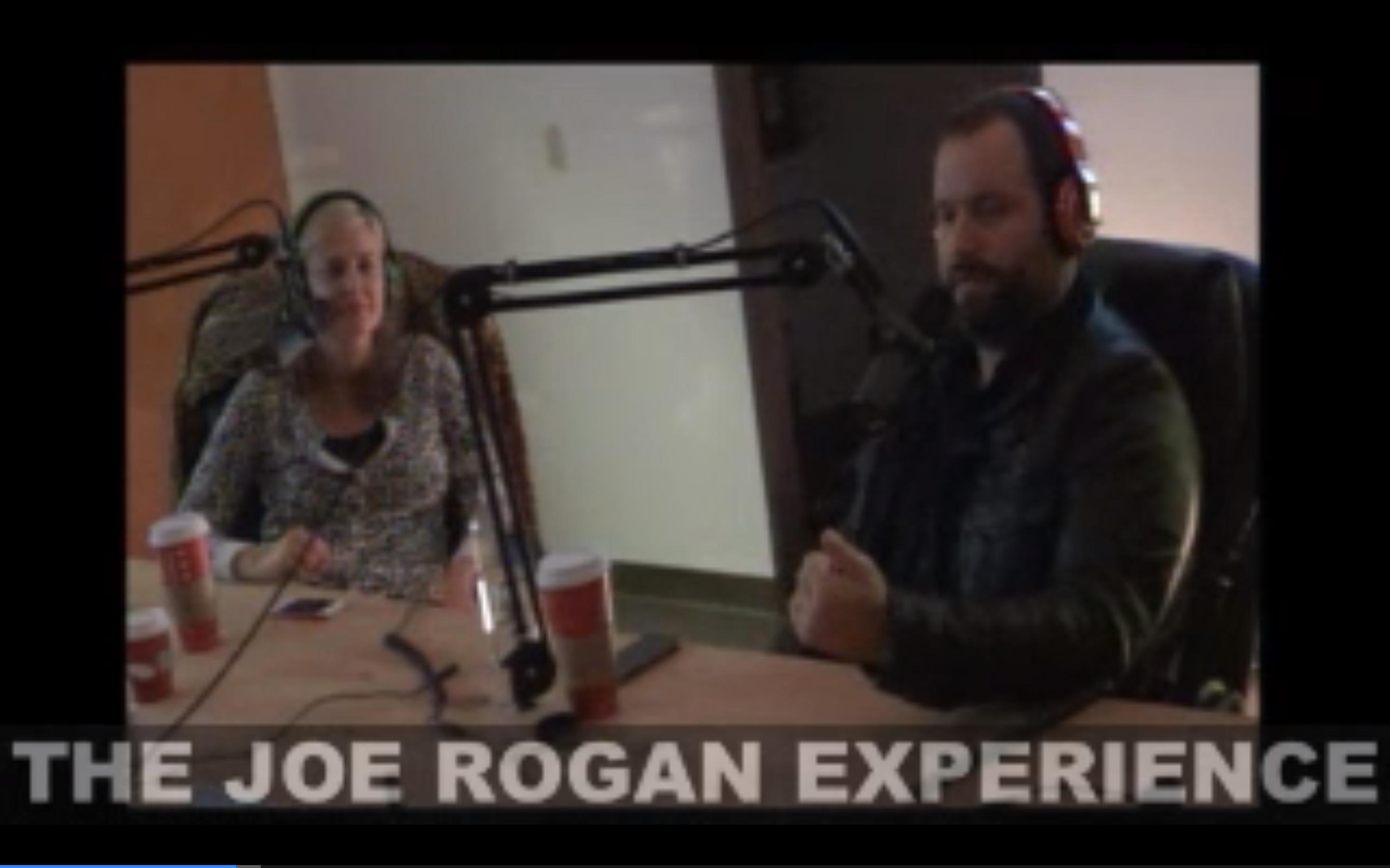 The Joe Rogan Experience #295 - Tom Segura, Christina Pazsitzky, Brian Redban