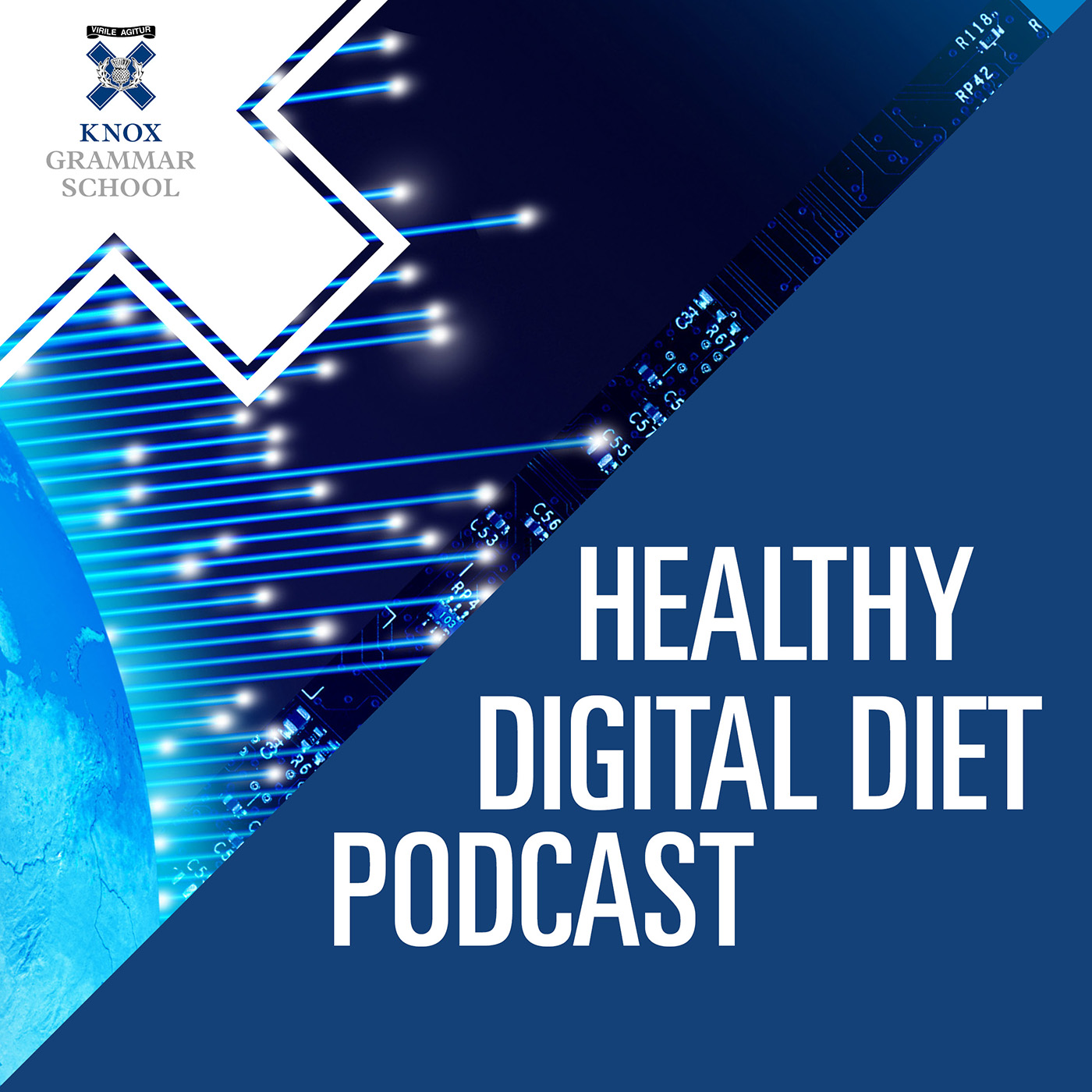 Healthy Digital Diet Podcast