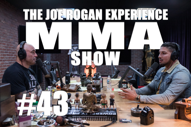 The Joe Rogan Experience JRE MMA Show #43 with Brendan Schaub