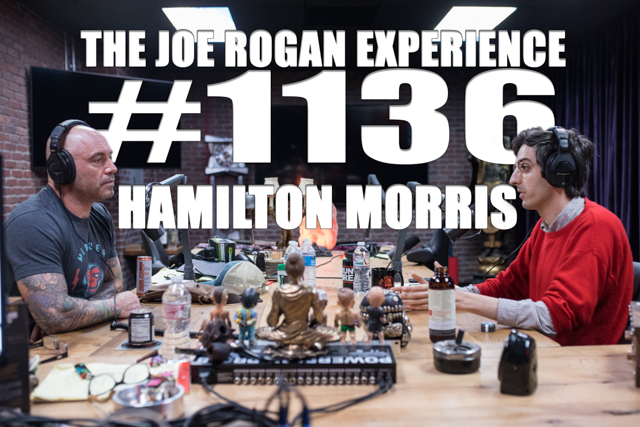 The Joe Rogan Experience #1136 - Hamilton Morris