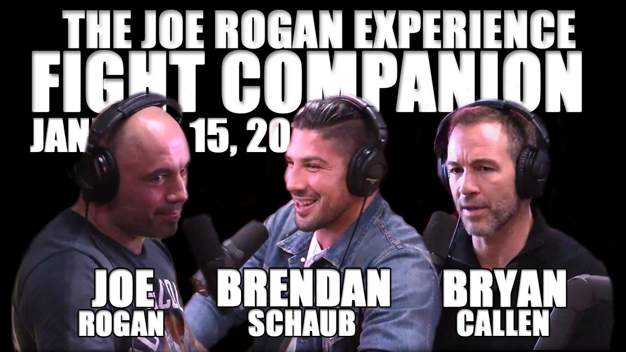 The Joe Rogan Experience Fight Companion - January 15, 2017