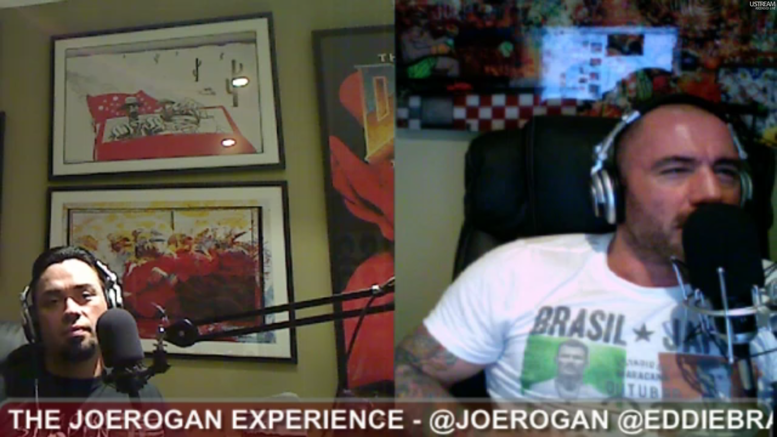 The Joe Rogan Experience #213 - Eddie Bravo