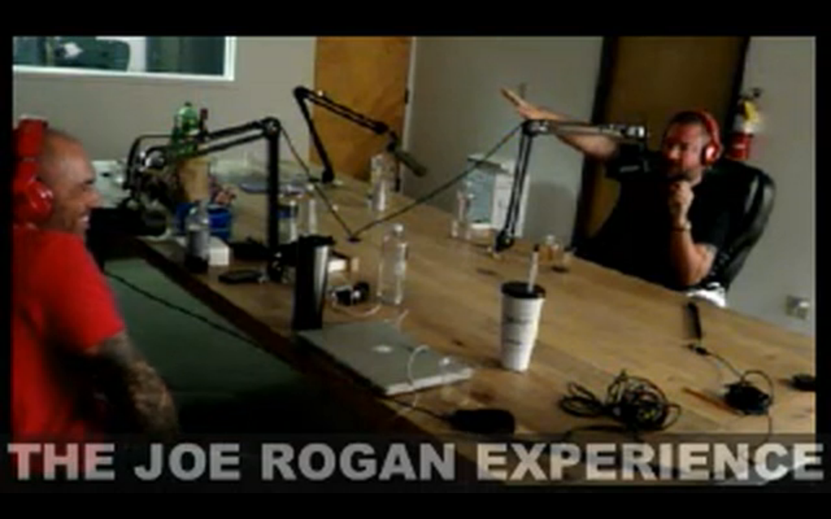 The Joe Rogan Experience #289 - Shane Smith, Brian Redban