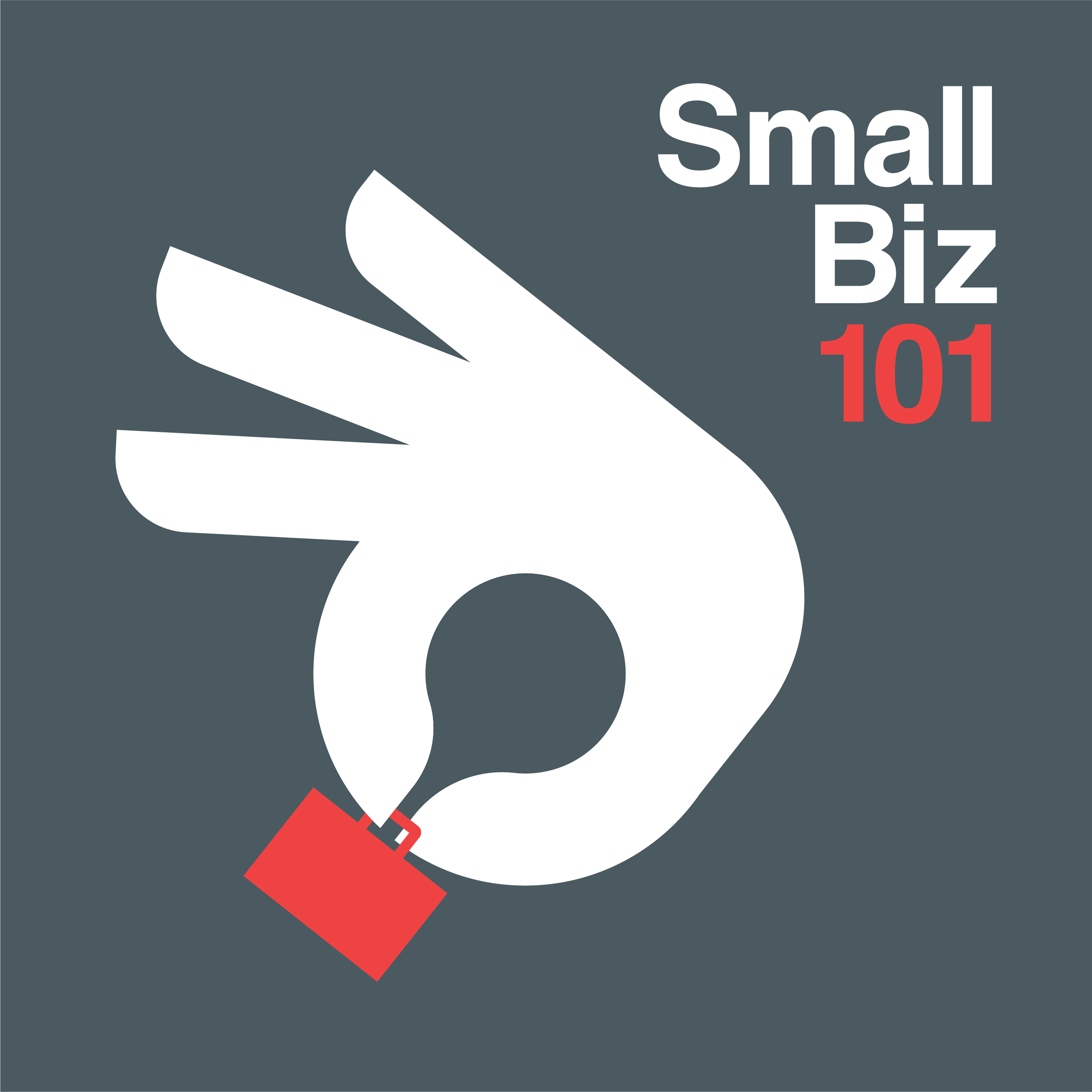 Small Biz 101 Podcast